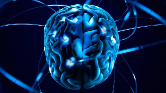 Cambiar el cerebro para cambiar el mundo